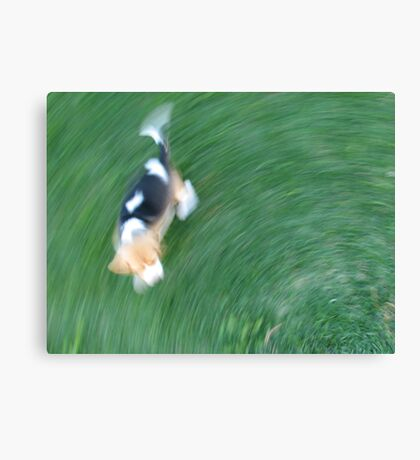Life with a Puppy Canvas Print
