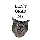 Don't Grab My (Kitty) by Deborah Singer