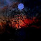 Feuer in der Nacht von Evita