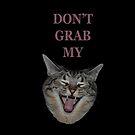 Don't Grab My (Kitty) 2 by Deborah Singer
