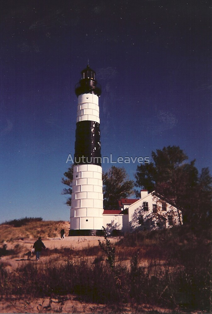 Big Sable Point Light by AutumnLeaves