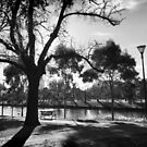 Melbourne by the Yarra by Roz McQuillan
