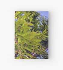 Under a tree Hardcover Journal