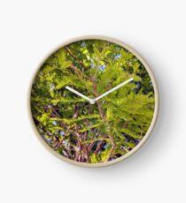 Under a tree Clock
