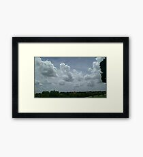 Artsy Nature in Houston Framed Print