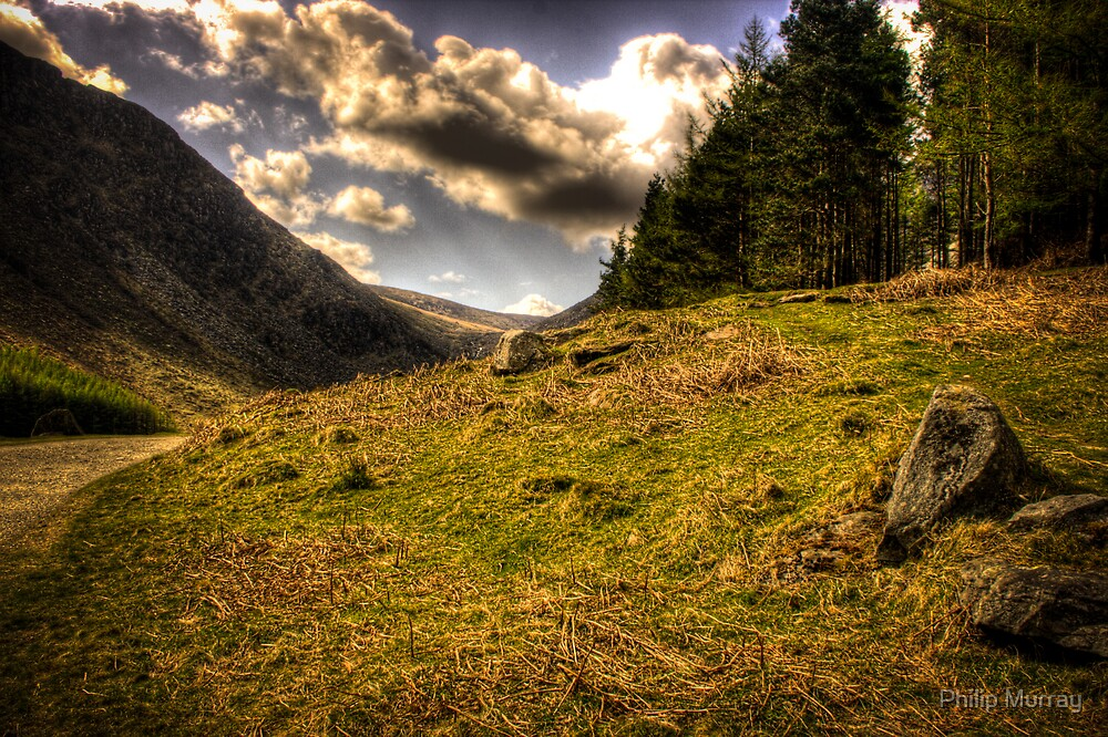 Valley of the Stone Trolls by Philip Murray