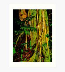 Forest Green Art Print