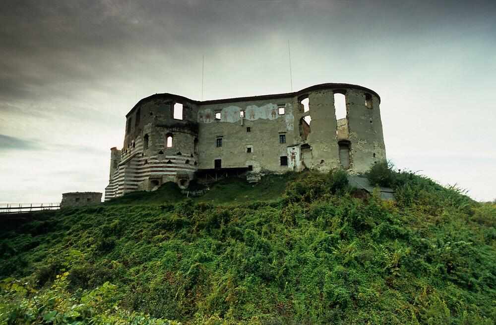 Castle by Kasia Nowak
