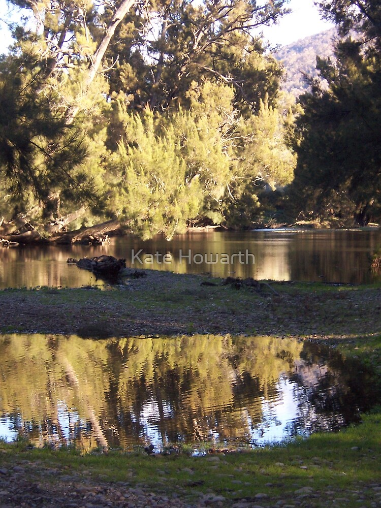 Goodradigbee River at Billy Grace Reserve by Kate Howarth