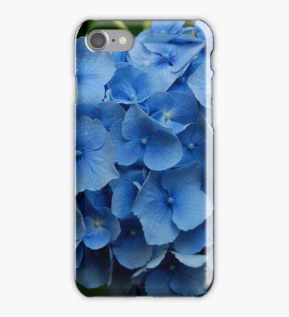 kathy's hydrangea, washington state.  iphone/samsung galaxy cover iPhone Case/Skin