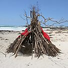 Diftwood Teepee by aussiebushstick