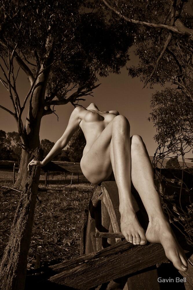 Blaxland by Gavin Bell