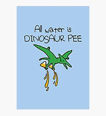 All Water Is Dinosaur Pee (Pterodactyl) Photographic Print