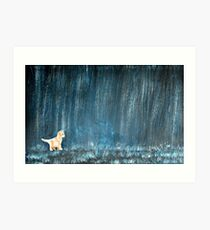 Cat In The Rain Art Print