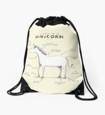 Anatomy of a Unicorn Drawstring Bag