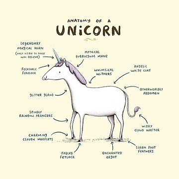 Anatomy of a Unicorn by SophieCorrigan
