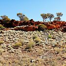Goldfields049 by Colin White