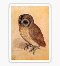 Little Owl by Albrecht Durer Sticker