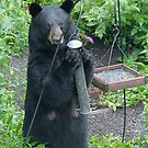 Standing Mama Bear by patti4glory