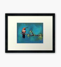 Rufus Hummingbird Framed Print