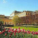 Jardin du Palais-Royal by Alex Cassels