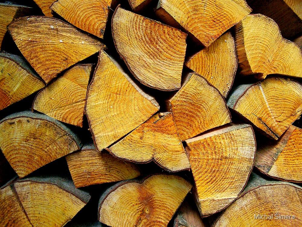 wood by Michal Šimera