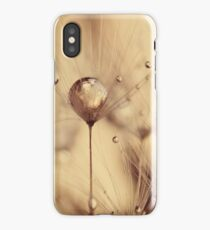 Dandelion - touch of gold iPhone Case/Skin