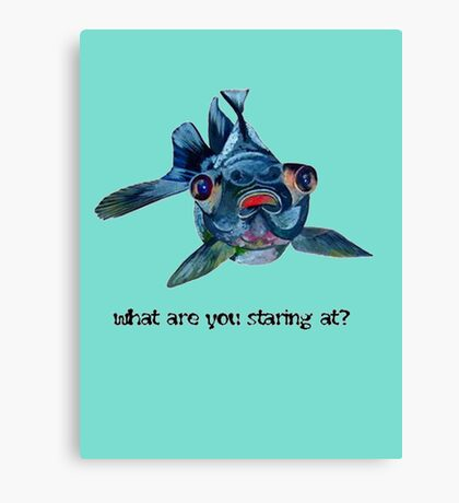 Blackmoor Goldfish And Text What Are You Staring At?  Canvas Print