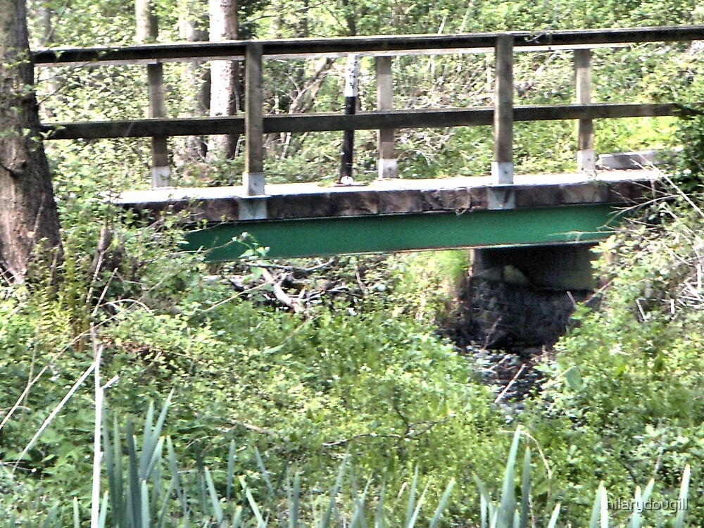 Bridge at Low Barns today by hilarydougill