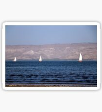 Sailing boats on the water Sticker