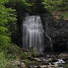 Meigs Falls by Sherri Hamilton