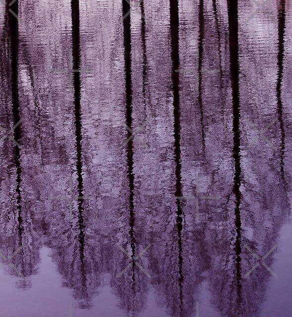 Water Trees - JUSTART © by JUSTART
