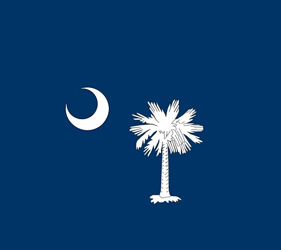 South Carolina State Flag by SkylineSquirrel