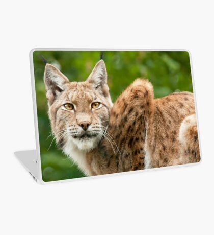 Golden eyes Laptop Skin