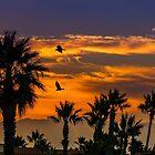 Sunrise in California by LudaNayvelt