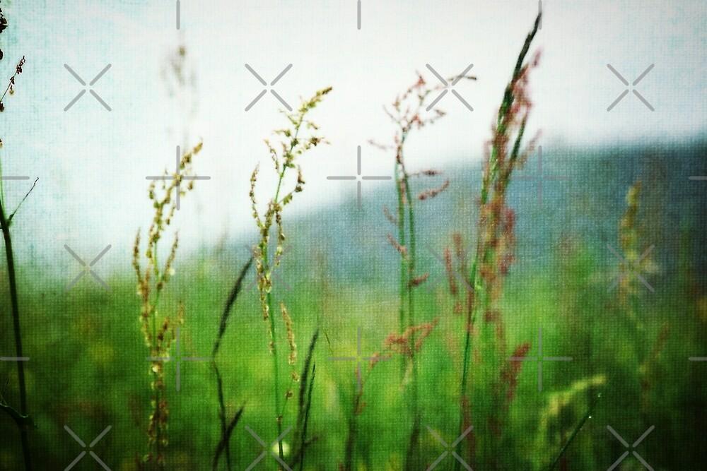 In the Meadow - JUSTART © by JUSTART