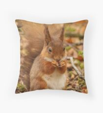 Little Tame Red Squirrel Throw Pillow