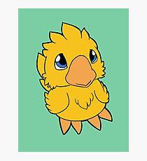 Chocobo Chick ~ Classic Yellow Photographic Print