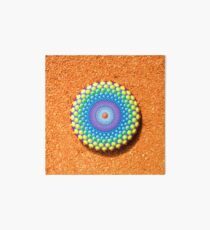 Hand painted mandala stone Art Board
