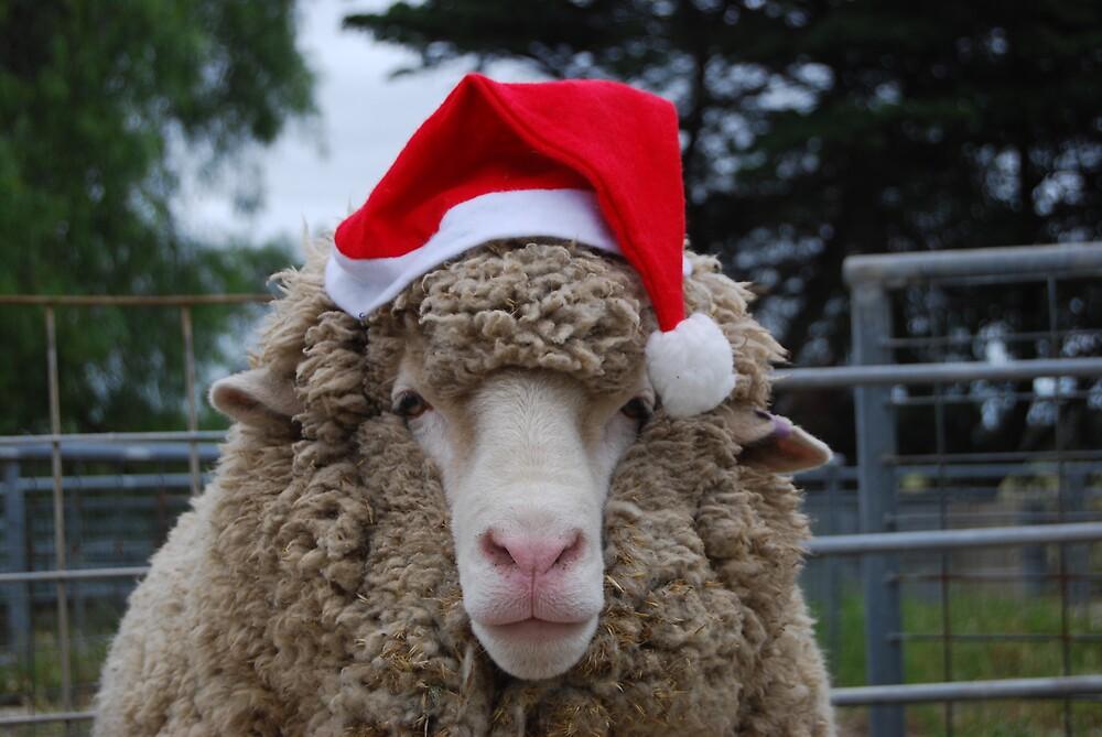 Merry Christmas by Robyn Stewart