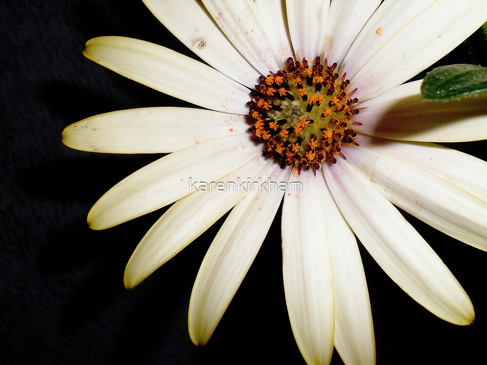 Imperfections by karenkirkham