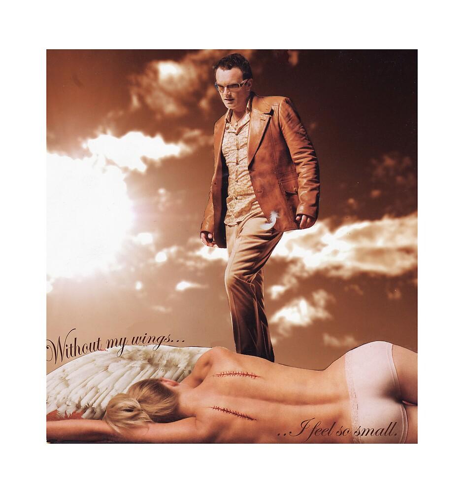 fallen angel by Tim Martin
