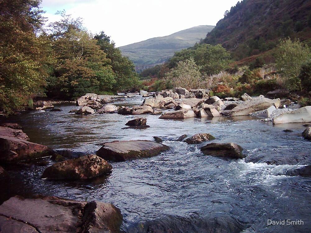 Mountain stream by David Smith