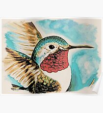 Hummingbird Art Contemporary Poster
