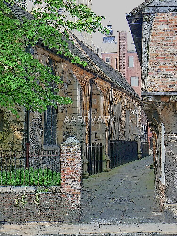 An Alleyway Off York's North Street  by AARDVARK
