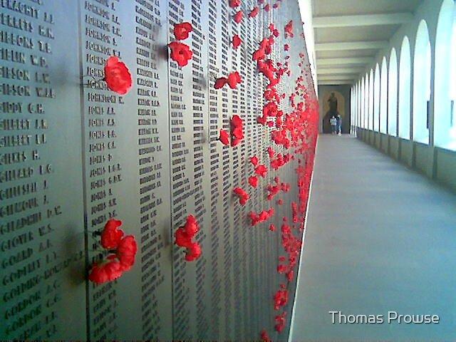 Rememberance 2 by Thomas Prowse