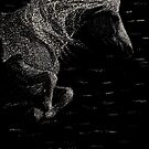 Leaping Unicorn Scratchboard by Stephanie Small