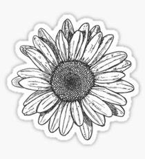 Liebling Gänseblümchen Sticker