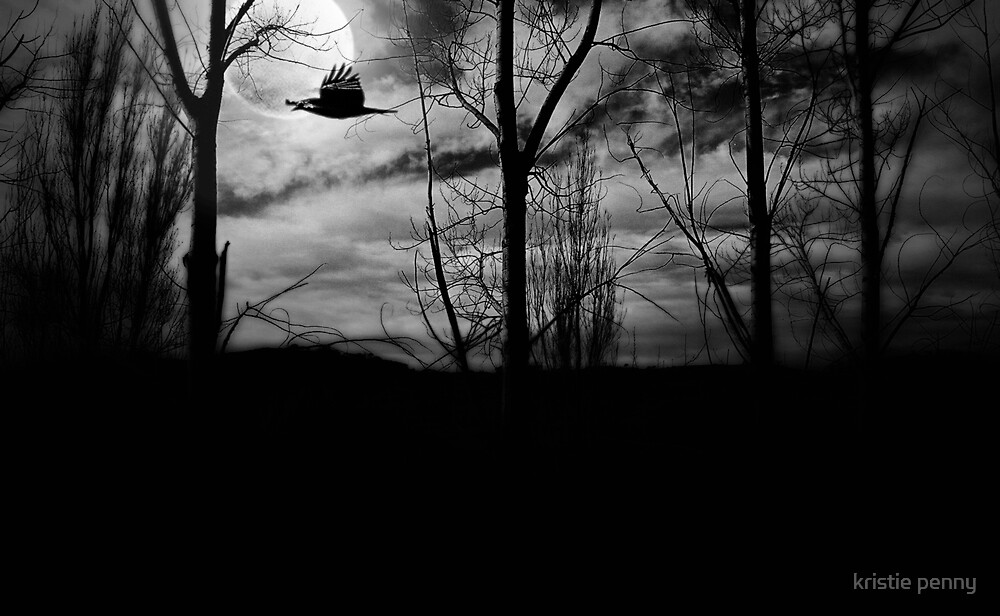 the moon, the raven and the clearing in the forest by kristie penny