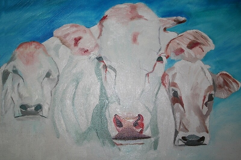 Cows by Marjanne Snoek
